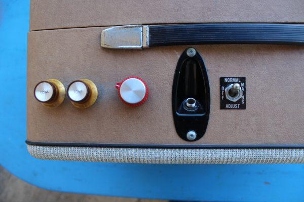 Custom Made guitar amplifier0