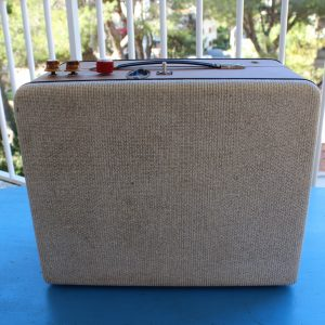 Custom Made guitar amplifier